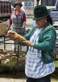 Conejillos de Indias - mercado del alimento - Ecuador Fotos de archivo