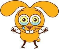 Conejito amarillo lindo que llora y que siente triste Imagen de archivo libre de regalías