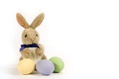 Conejito con los huevos coloreados - horizontales Foto de archivo libre de regalías