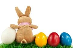 Conejito con los huevos de Pascua coloridos Imágenes de archivo libres de regalías