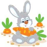 Conejito con una zanahoria ilustración del vector
