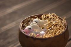 Conejito de dos pascua en una cesta Imágenes de archivo libres de regalías