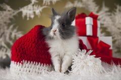 Conejito de la Navidad, sombrero del rojo del bebé de santa Fotos de archivo