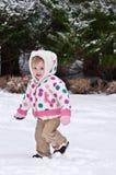 Conejito de la nieve Foto de archivo libre de regalías