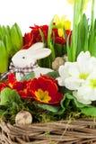 Conejito de pascua con las flores de la primavera Imagenes de archivo