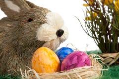 Conejito de pascua con los huevos de Pascua coloridos Fotos de archivo