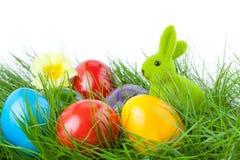 Conejito de pascua con los huevos de Pascua en hierba verde Foto de archivo
