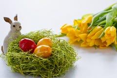 Conejito de pascua con los huevos pintados del éster fotografía de archivo libre de regalías