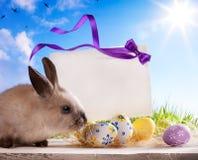 Conejito de pascua de la tarjeta de felicitación y huevos de Pascua Fotos de archivo
