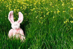 Conejito de pascua del juguete en hierba verde Fotos de archivo