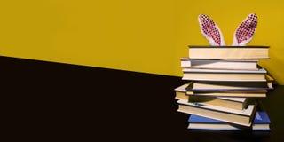Conejito de pascua detrás de los libros Imagenes de archivo
