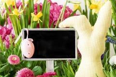 Conejito de pascua, flores coloridas de la primavera, espacio de la copia Fotos de archivo libres de regalías
