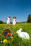 Conejito de pascua que mira el huevo buscar Foto de archivo libre de regalías