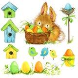 Conejito de pascua y huevo de Pascua con la decoración del jardín Fondo para la enhorabuena watercolor