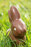 Conejito del chocolate en la hierba imagen de archivo