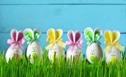 Conejito divertido de Pascua en hierba verde con los huevos de Pascua Fondo de Pascua Imagen de archivo