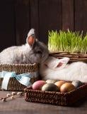 Conejito lindo de dos pascua con los huevos coloreados imagen de archivo libre de regalías