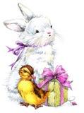 Conejito lindo de la acuarela y pequeños pájaro, regalo y fondo de las flores Fotos de archivo