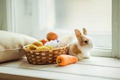 Conejito lindo de Pascua que se sienta en el travesaño de la ventana con la cesta de huevos y de zanahorias coloreados imagen de archivo libre de regalías