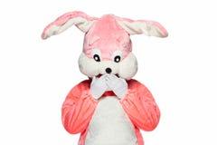 Juego rosado del conejo aislado en el fondo blanco Fotografía de archivo libre de regalías