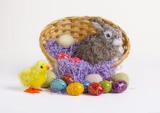 Conejito, polluelo y huevos de pascua Fotografía de archivo