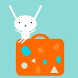 Conejito que se sienta en una maleta Fotografía de archivo libre de regalías