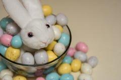 Conejito relleno en un cuenco de caramelo de Pascua Imagen de archivo