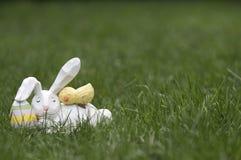 Conejito y Chick Sleeping de pascua en hierba fotos de archivo