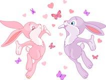 Conejitos de la tarjeta del día de San Valentín Imagen de archivo libre de regalías