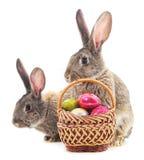 Conejitos de pascua con los huevos coloreados Fotografía de archivo libre de regalías