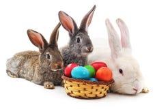 Conejitos de pascua con los huevos coloreados Imagenes de archivo