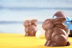 Conejitos de pascua del chocolate Imagen de archivo libre de regalías