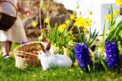 Conejitos de pascua en prado con la cesta y los huevos Imagenes de archivo