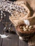 Conejitos de pascua y huevos de codornices Fotos de archivo libres de regalías