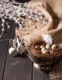 Conejitos de pascua y huevos de codornices Imagenes de archivo