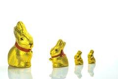 Conejitos del chocolate de Pascua Foto de archivo