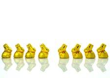 Conejitos del chocolate de Pascua Imágenes de archivo libres de regalías