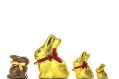 Conejitos del chocolate de Pascua Foto de archivo libre de regalías