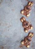 Conejitos del chocolate para Pascua Imagen de archivo libre de regalías