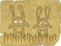 Conejitos en campo de las zanahorias Foto de archivo libre de regalías