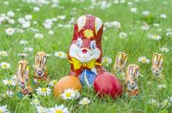 Conejitos envueltos del chocolate con los huevos de Pascua en la hierba Imágenes de archivo libres de regalías