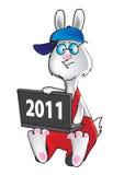 Conejo 2011 del programador Fotografía de archivo libre de regalías