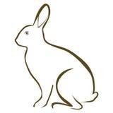 Conejo libre illustration