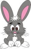 Conejo, ilustración del vector