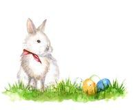 Conejo blanco stock de ilustración