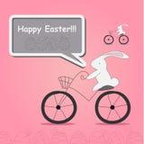 Conejo blanco en la bicicleta