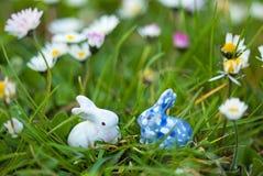 Conejo blanco y azul Fotos de archivo