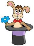 Conejo con la flor en sombrero Imagenes de archivo