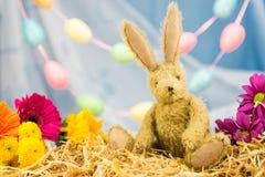Conejo de conejito de pascua, flores frescas, guirnalda del huevo Mirada adelante Imágenes de archivo libres de regalías