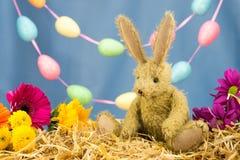Conejo de conejito de pascua, flores frescas y guirnalda del huevo Fotografía de archivo libre de regalías
